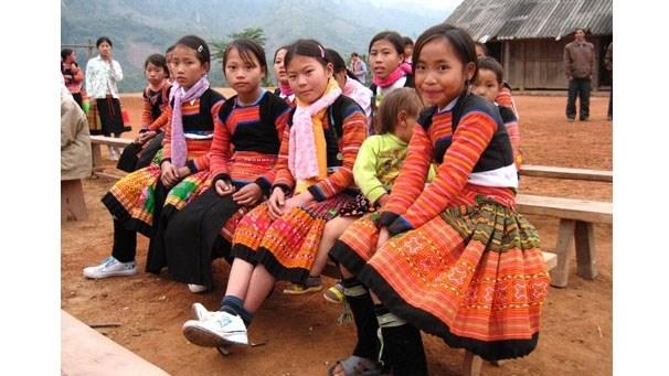 Plus de 54 milliards de dongs pour preserver la culture des ethnies minoritaires hinh anh 1