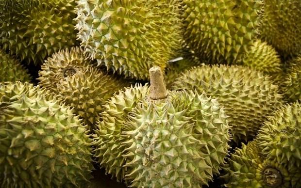 La Thailande, 1er fournisseur de fruits et de legumes au Vietnam en 7 mois hinh anh 1
