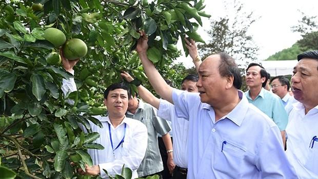 Le Premier ministre demande a Nghe An de mieux valoriser ses atouts hinh anh 2