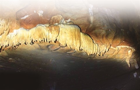 La beaute ineffable de la grotte Lang hinh anh 1