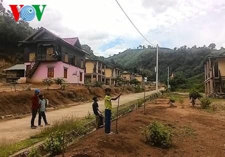 Nouvelle ruralite: Un programme de relogement modele a Quang Tri hinh anh 2