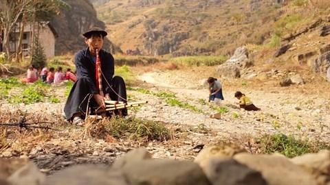 Un film sur le marche de l'amour de Khau Vai disponible sur Youtube hinh anh 3