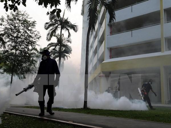 Zika : Singapour denombre 27 nouveaux cas d'infection hinh anh 2