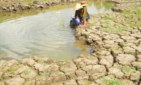 Vietnam et Canada echangent d'experiences sur la resilience aux changements climatiques hinh anh 1