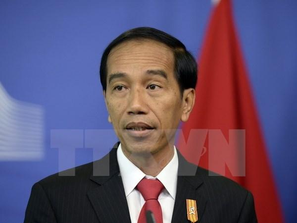 L'Indonesie appelle a une cooperation economique plus forte au sein de l'ASEAN hinh anh 1