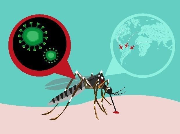 Le cas infecte par le virus Zika au Japon n'est pas vietnamien hinh anh 1