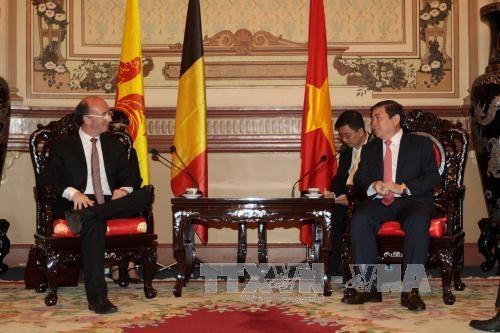 Ho Chi Minh-Ville souhaite elargir sa cooperation avec la Wallonie-Bruxelles hinh anh 1