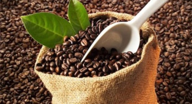 Les exportations nationales de cafe ont depasse les previsions hinh anh 1
