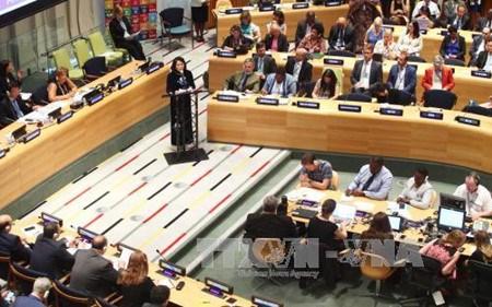Quelle place pour le Vietnam 39 ans apres son adhesion a l'ONU? hinh anh 1