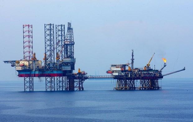 Plus de la moitie des capitaux russes vont dans les secteurs du petrole et de l'exploitation miniere hinh anh 1