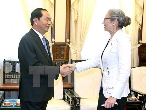 Le Vietnam souhaite renforcer ses liens avec les Pays-Bas hinh anh 1