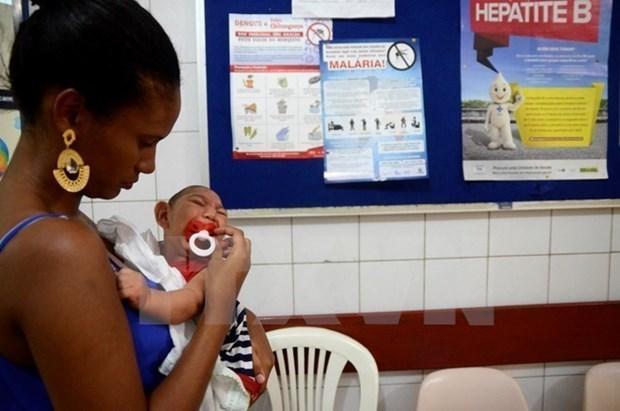 Les Philippines confirment trois nouveaux cas de virus Zika hinh anh 1