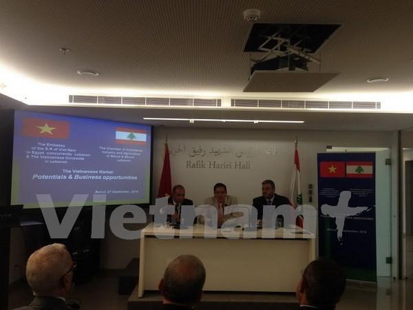 Le Liban souhaite renforcer la cooperation economique avec le Vietnam hinh anh 1