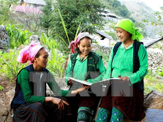 Les minorites ethniques representent 14,6 % de la population du Vietnam hinh anh 1