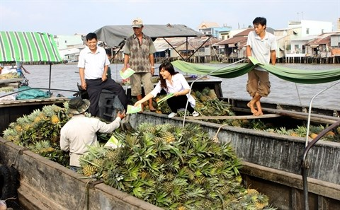 Le Vietnam se prepare a combattre le virus Zika hinh anh 2