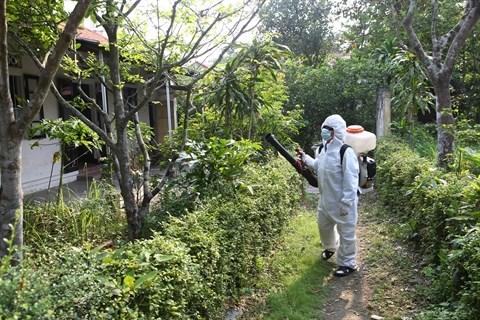 Le Vietnam se prepare a combattre le virus Zika hinh anh 1