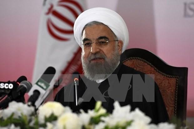 Le president de la Republique islamique d'Iran Hassan Rohani entame sa visite d'Etat au Vietnam hinh anh 1