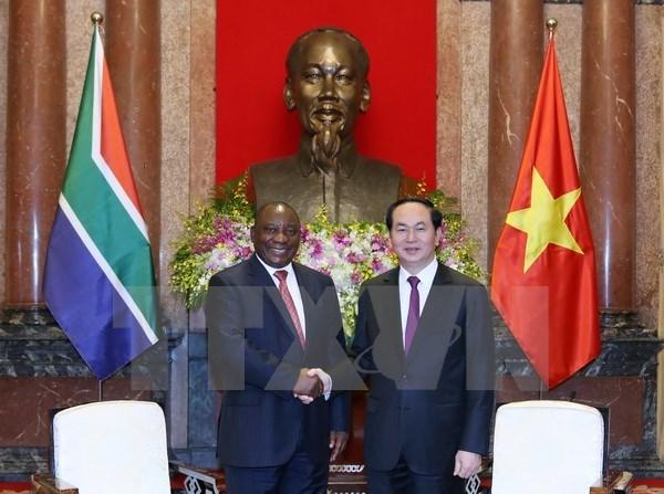 L'Afrique du Sud est le premier partenaire du Vietnam en Afrique hinh anh 1