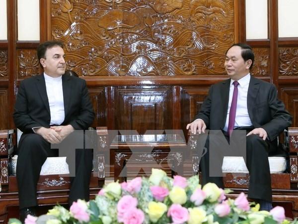 Porter les relations Vietnam-Iran a une nouvelle hauteur hinh anh 1