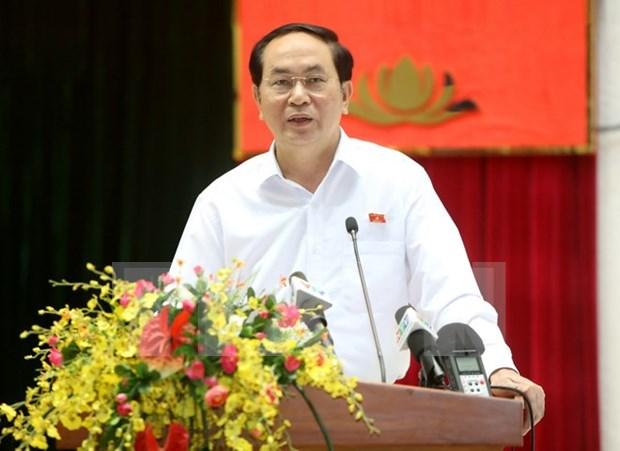 Le president Tran Dai Quang a l'ecoute des electeurs de Ho Chi Minh-Ville hinh anh 1