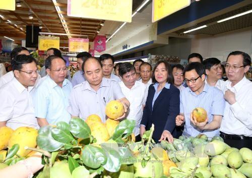 Le PM Nguyen XUan Phuc sur le front de la securite alimentaire hinh anh 2