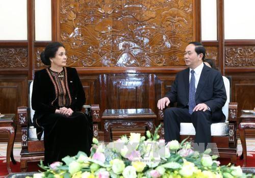 Le president Tran Dai Quang recoit de nouveaux ambassadeurs hinh anh 7