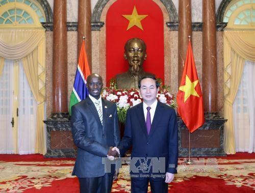 Le president Tran Dai Quang recoit de nouveaux ambassadeurs hinh anh 5