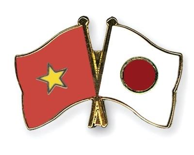 L'Association d'amitie Vietnam-Japon de HCM-Ville contribue aux echanges entre les deux peuples hinh anh 1