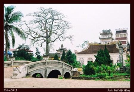 Nam Dinh, une terre riche en patrimoines hinh anh 1