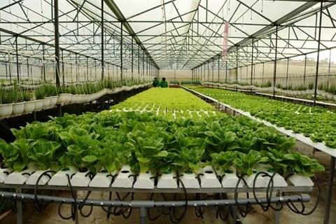 Quang Ninh seduit les projets agricoles hinh anh 1