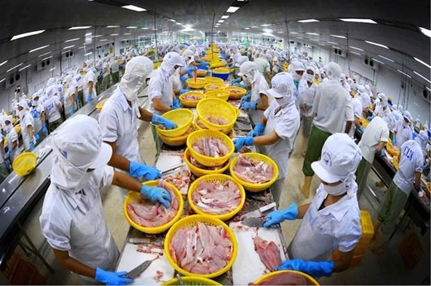 Les exportations de poisson tra estimees a 1,7 milliard de dollars en 2016 hinh anh 1