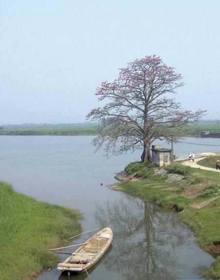 Le village Hanh Thien, un village pas comme les autres hinh anh 3
