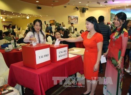 Les Vietnamiens en Malaisie et en R. tcheque s'orientent vers la Patrie hinh anh 1