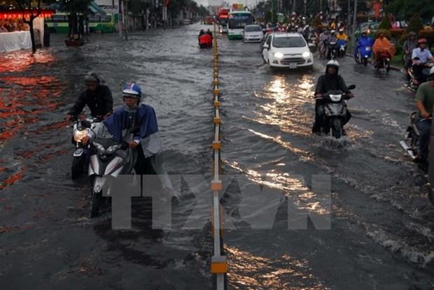 Ho Chi Minh-Ville souhaite accueillir des investisseurs neerlandais hinh anh 1