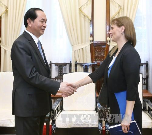 Le president Tran Dai Quang recoit l'ambassadrice d'Israel au Vietnam hinh anh 1
