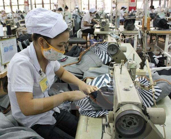 Textile: renforcement des capacites des chaines d'approvisionnement au sein de l'ASEAN hinh anh 1
