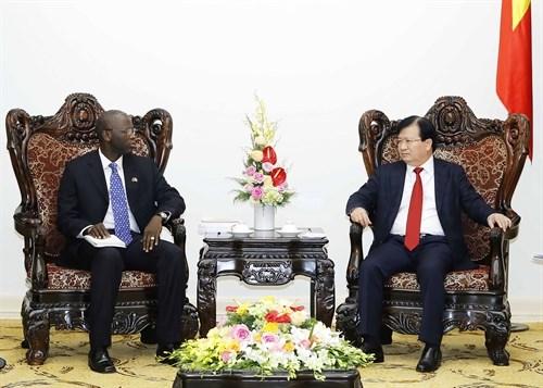 Le vice-PM Trinh Dinh Dung recoit le directeur national de la BM au Vietnam hinh anh 1