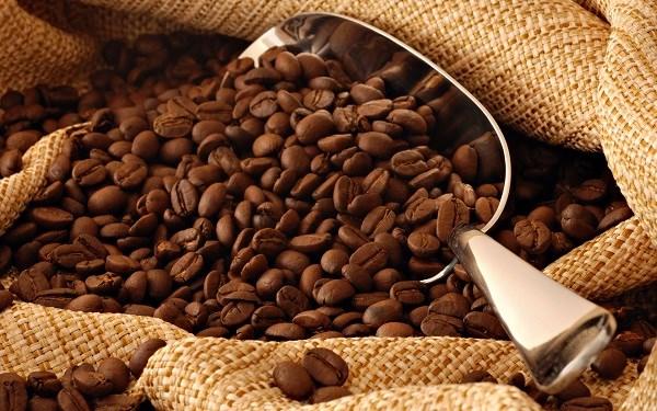Cafe: le Vietnam vise 6 milliards de dollars d'exportations hinh anh 1