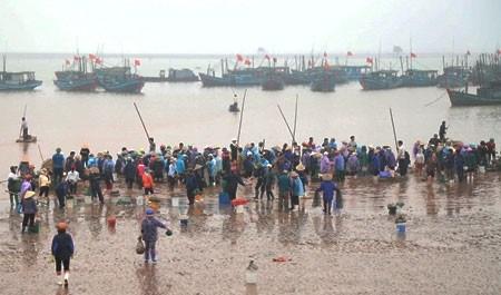 Le marche aux poissons de Giao Hai hinh anh 1