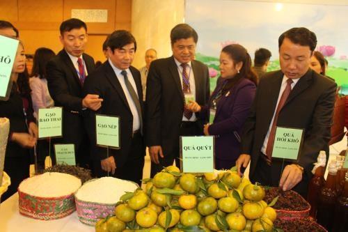 Pour une cooperation plus efficiente entre des exportateurs vietnamiens et chinois hinh anh 1