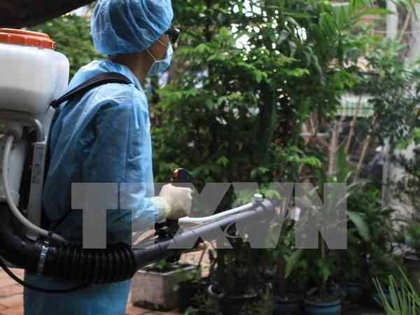 De nouveaux cas de Zika detectes a Ho Chi Minh-Ville et a Ba Ria-Vung Tau hinh anh 1