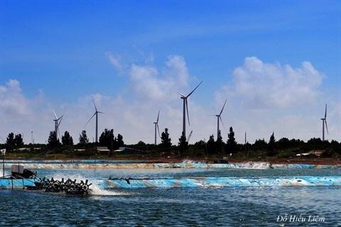 Les energies renouvelables pour un avenir durable hinh anh 3