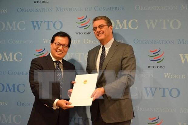 Le directeur general de l'OMC apprecie les acquis socioeconomiques du Vietnam hinh anh 1