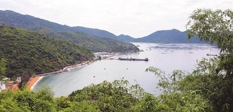 Phu Yen : Voyage grandeur nature en baie de Vung Ro hinh anh 2