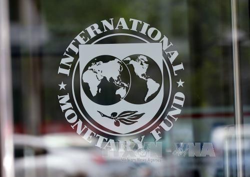 FMI : la croissance indonesienne devrait atteindre 5,1 % en 2017 hinh anh 1