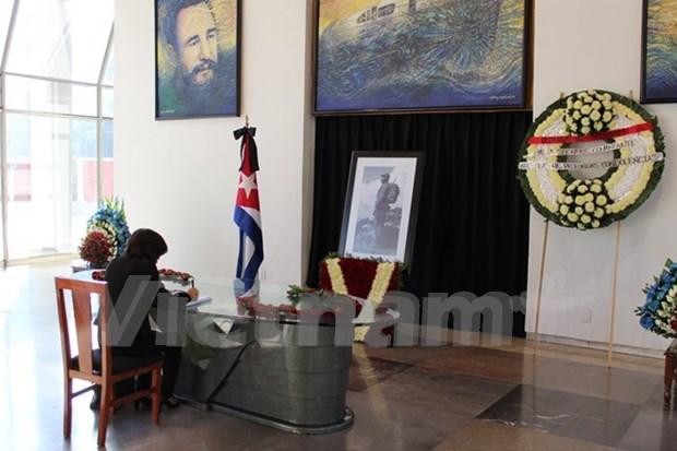 Des Vietnamiens au Mexique rendent un hommage au leader cubain Fidel Castro hinh anh 1