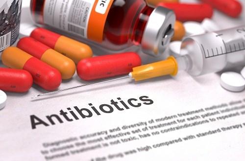 Meeting en echo a la Semaine mondiale pour un bon usage des antibiotiques hinh anh 1