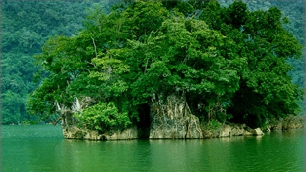Le parc national de Ba Be vaut vraiment le detour hinh anh 1
