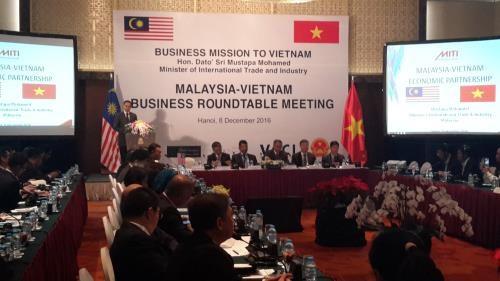 Table ronde des entreprises vietnamiennes et malaisiennes hinh anh 1