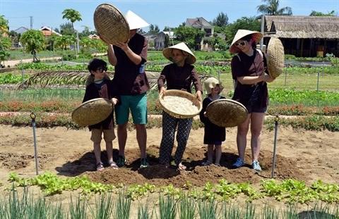 La decouverte maritime et insulaire a le vent en poupe a Quang Nam hinh anh 2